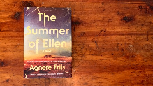 The Summer of Ellen, by Agnete Friis