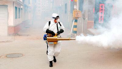 Coronavirus Has Now Spread To All Regions Of Mainland China