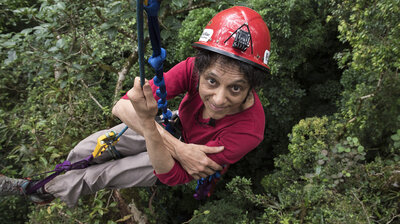 Exploring The Canopy With 'TreeTop Barbie'