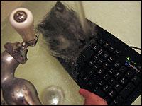 Nell Boyce runs a Seal Shield keyboard underwater.