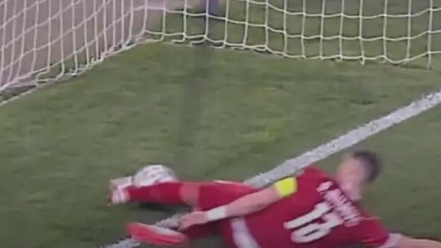 Serbian defender Stefan Mitrovic takes the ball away from behind the goal line after a bet by Ronaldo.