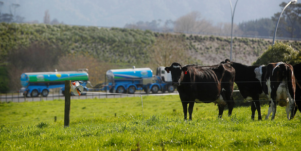 Fonterra can raise equity from only two sources. Photo / Christine Cornege