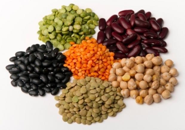 Imagini pentru leguminoase