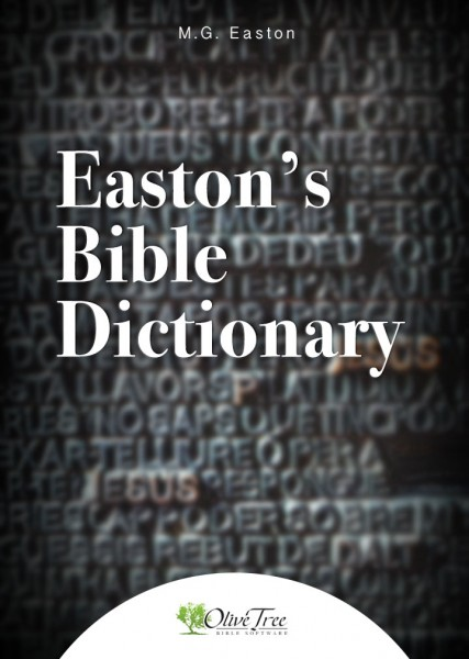 Biblical Dictionary Definitions