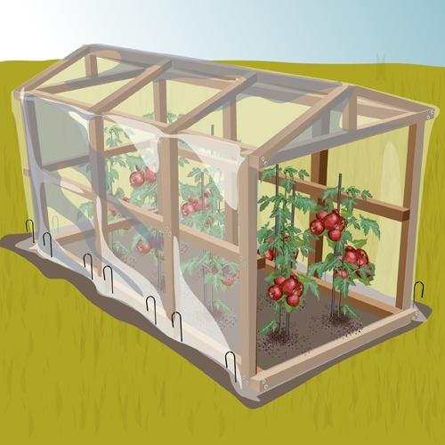 Comment Fabriquer Une Serre A Tomates Ooreka