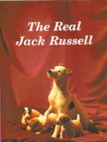 The Real Jack Russell