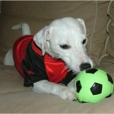 Min fotbollsparson Hera