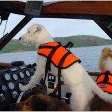 Min kaptensparson Selma