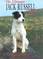 The Ultimate Jack Russell Terrier