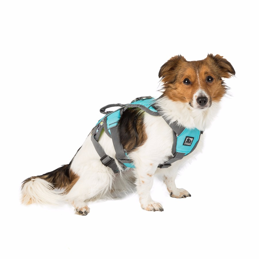 3 Peaks LimeBlue Excursion Dog Harness Large Pets At Home