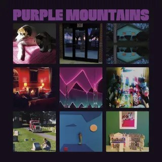 Image result for purple mountains album cover
