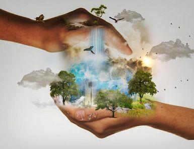 Nature Conservation, Landscapes, Accountability, Nature, World, Biosphere,  Responsibility, Mood, Hands, Pointers, Adler, Clouds, Birds, Ara, Vapors,  Lion | PixCove