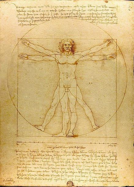 Man Gentleman The Vitruvian Man Leonardo Da Vinci