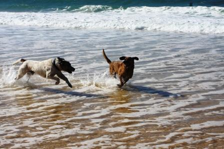 Bob and Mary playing along the Alentejo Coast