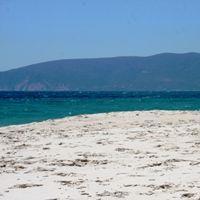 Articles on Comporta beach Portugal