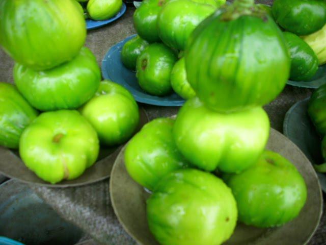 Garcinia cambogia translate to chinese