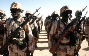 Niger Army; Photo credits: Wikipedia