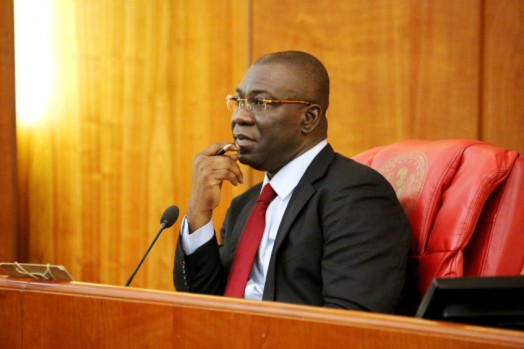 Ike Ekweremadu, Deputy Senate President
