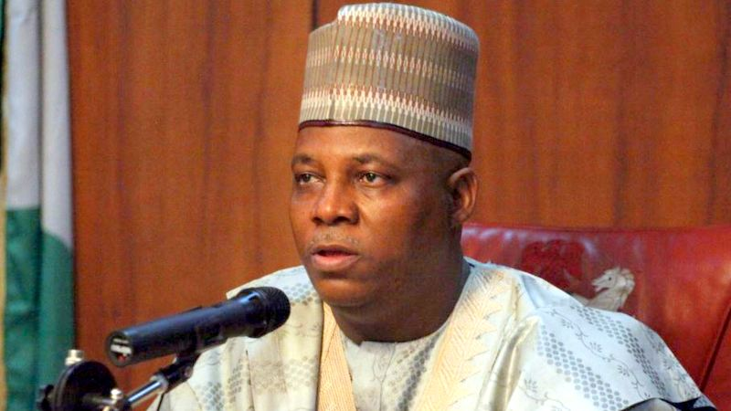 Governor Kashim Shettima Photo: VOA Hausa