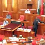 Nigerian Senate confirms new Auditor-General of Federation