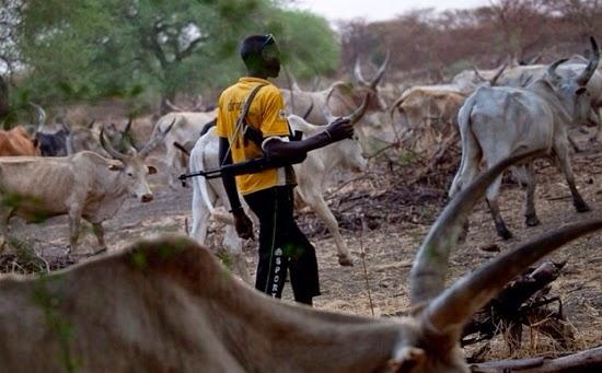 Image result for fulani herdsmen in calabar