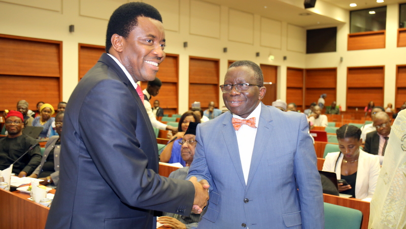 The Minister of Health, Prof. Isacc Adewole  in handshake with Chairman, House Committee on Health Care Services, Hon. Chike Okafor during the  the public hearing on the urgent need to avert a national health crisis through revitalization   and adequate funding of Primary Healthcare System organized by the House of Representative Committee on Health Services in Abuja.