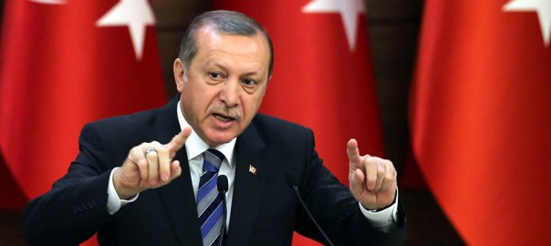 President Tayyip Erdogan   Facts on Turkey