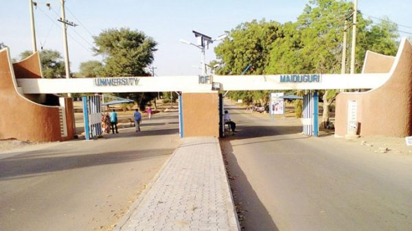 University of Maiduguri