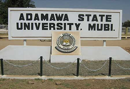 Image result for Adamawa University's Unions begin indefinite strike