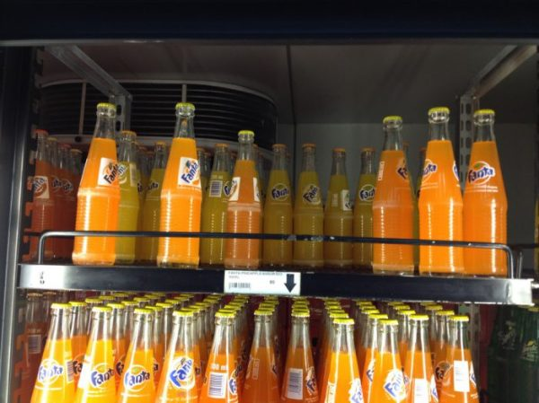 Fanta [Photo credit: Jason Kerwin]