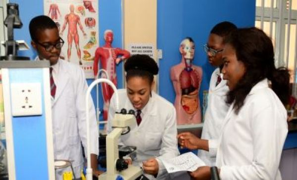 Sascon International School students in the laboratory