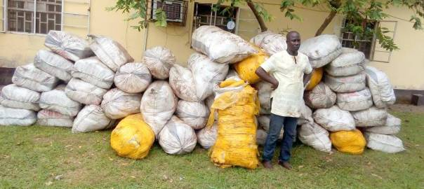 Bola adigun with the seized cannabis