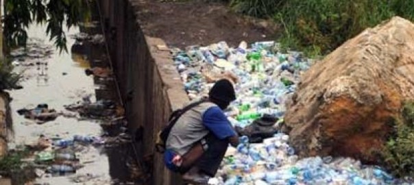 Open Defecation [Photo Credit: allAfrica]