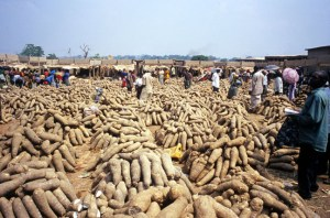 Heaps of Anam yam in a Nigerian Market