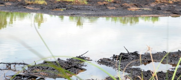 Oil spill caused by damaged riser