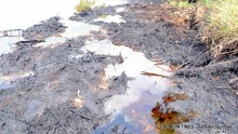Oil spill caused by a damaged riser
