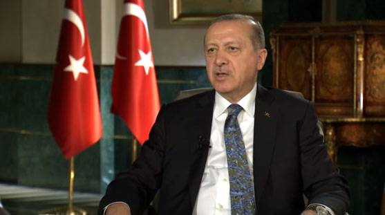 Erdogan Says Turkey Ready To Help Afghanistan Eliminate Is