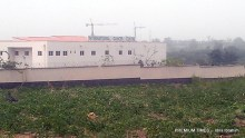 Photo of Turai Yar'adua Cancer Centre that has converted to beans plantation