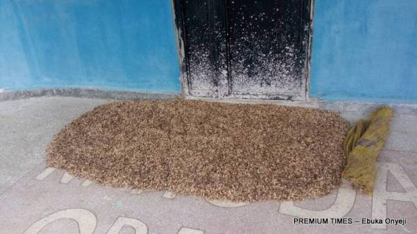 Entrance to Gbaye PHC now used for seed spreading - a tell tale sign that nobody is coming!