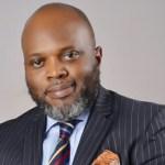 ANRP Chairman, Tope Fasua