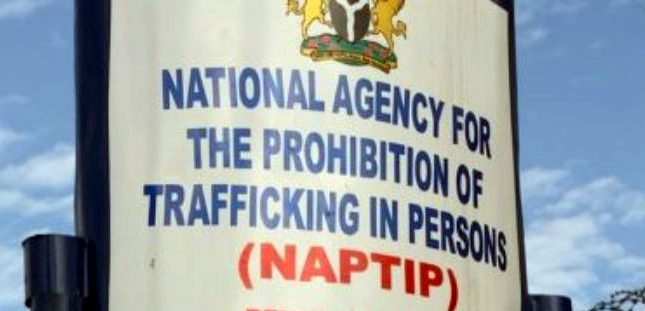 NAPTIP rescues 2,884 Lagos indigenes from traffickers in 16 years