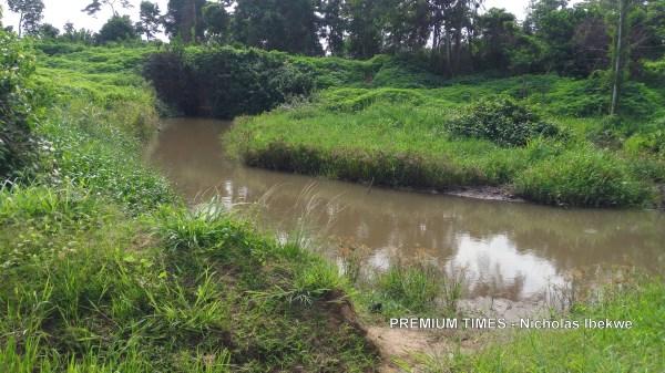 River Osun snakes besides Kolawole Rotimi's farm at Ijero-Ekiti