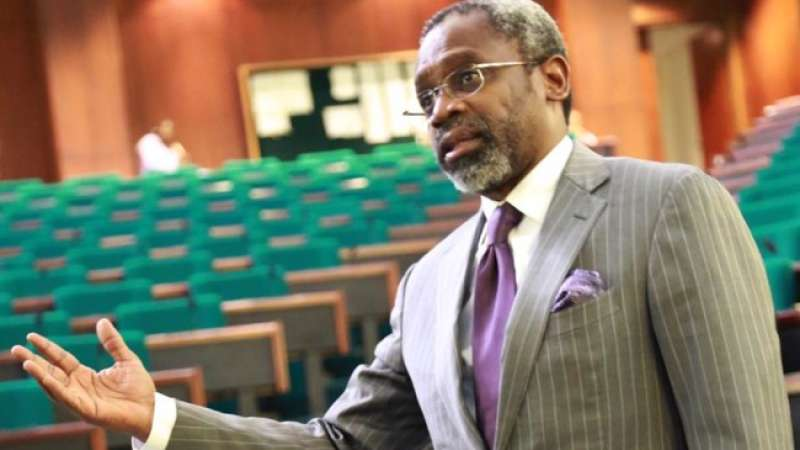 Image result for 'Femi Gbajabiamila Cannot Be Speaker' Protest Rocks Nigerian Consulate In U.S