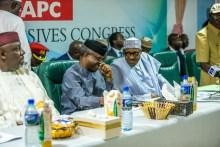 The APC Caucus meeting [Photo: Novo Isioro]