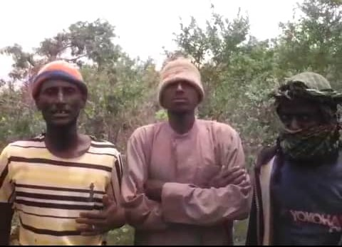 Ali Gaga Left with Boko Haram Members planning to Surrender