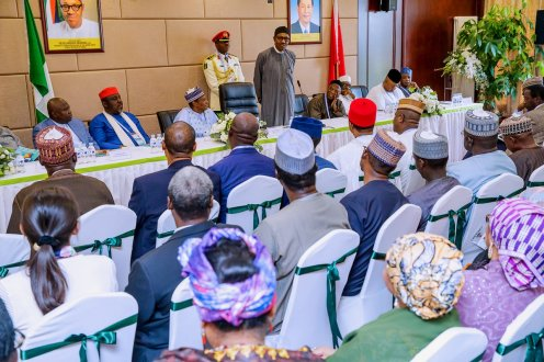 Buhari addressing Nigeria community in China
