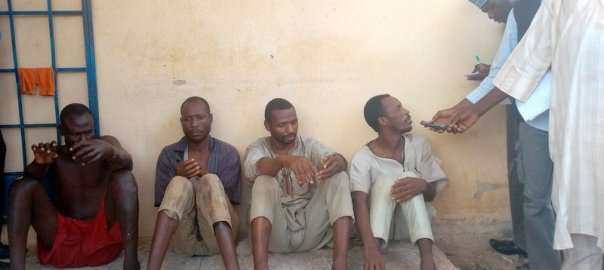 Gangs of Notorious Robbers terrorising Jigawa arrested