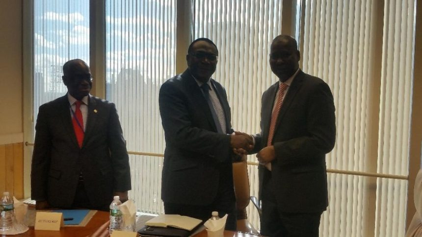 Nigeria emerges chair of ECOWAS Group at UN