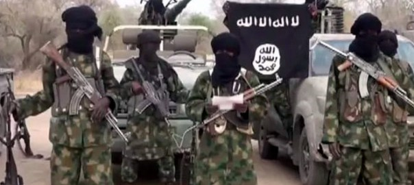 Boko Haram used to illustrate the story.