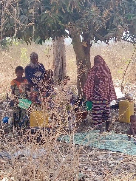 Caption: Fulani families living under tree